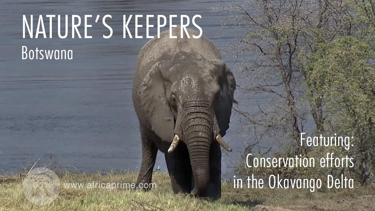 Natures Keepers Botswana