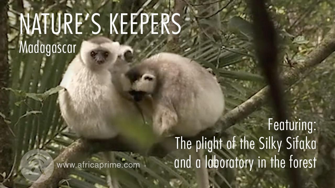 NaturesKeepersMadagascar