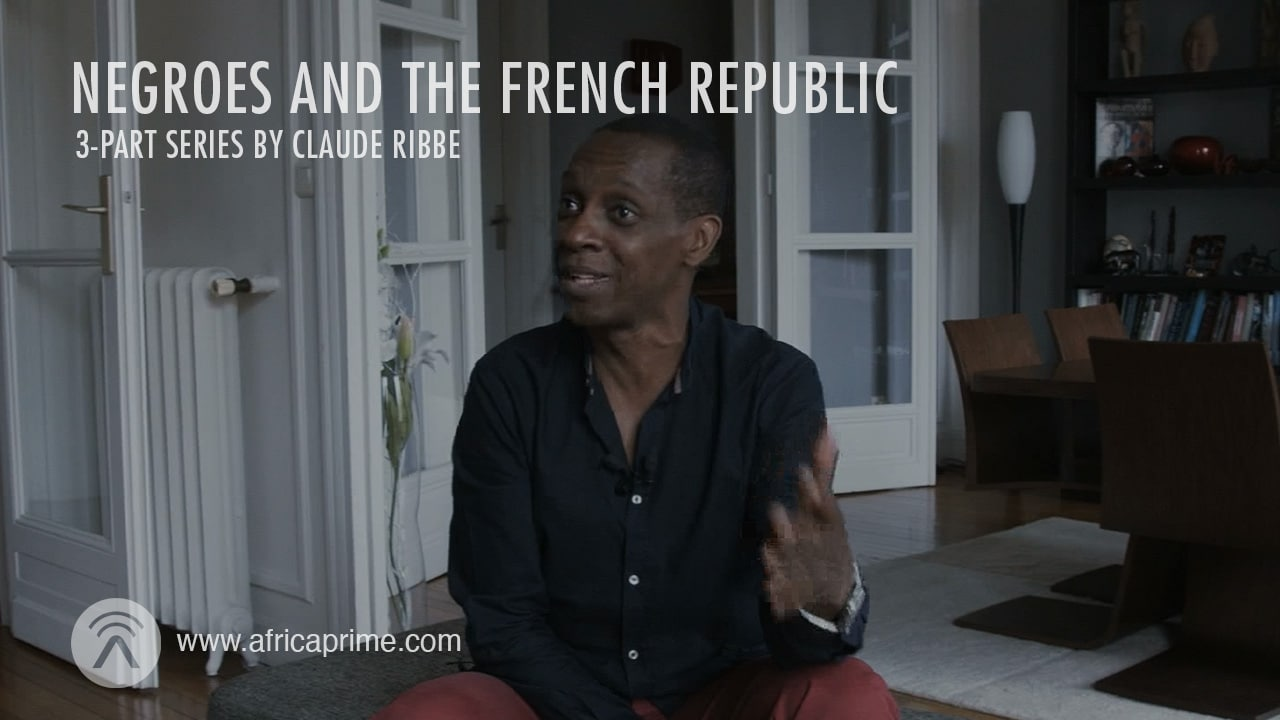 Negroes and the French Republic